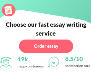 fast essay writing service